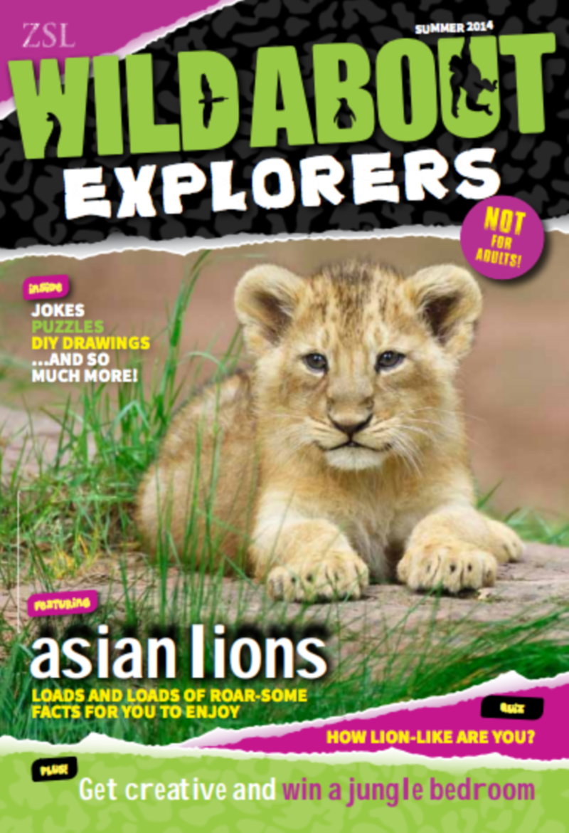 WildAbout Explorers