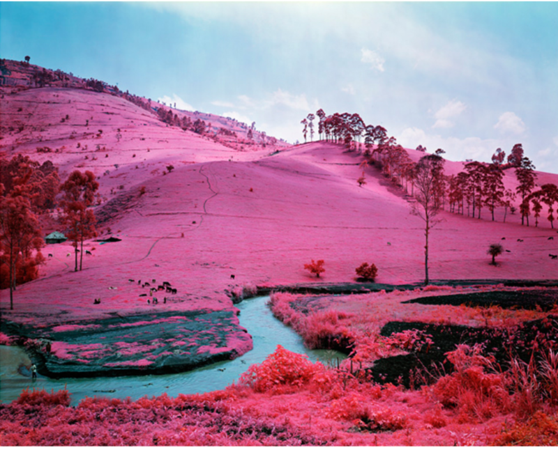 Dissertation: Beyond Representation? Colour, affect and the aestheticisation of conflict in Richard Mosse's images of the Democratic Republic of Congo.