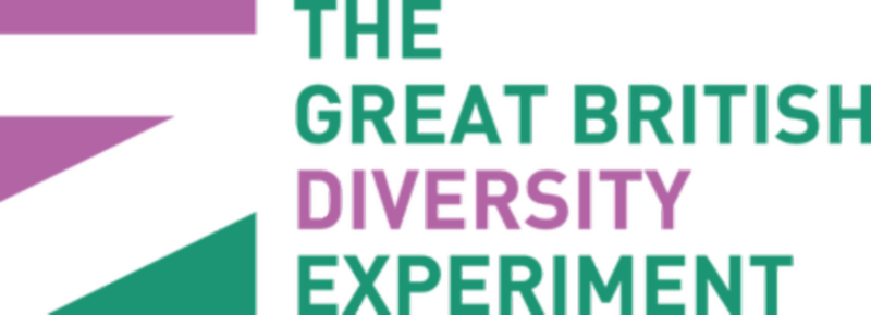 The Great British Diversity Experiment