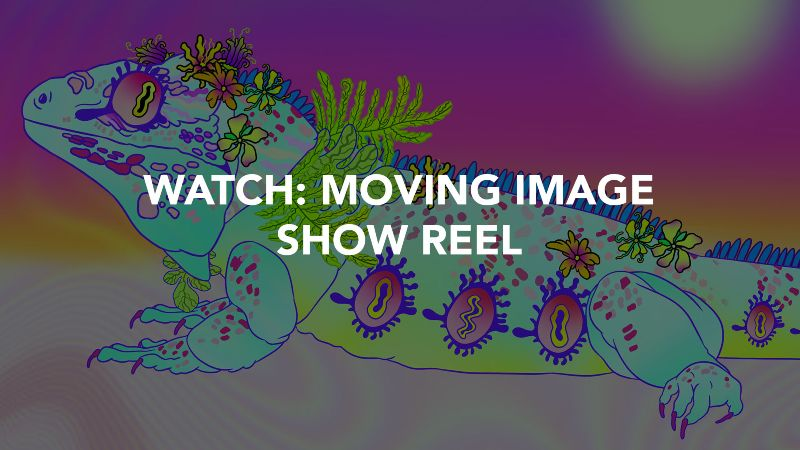 Moving Image Show Reel