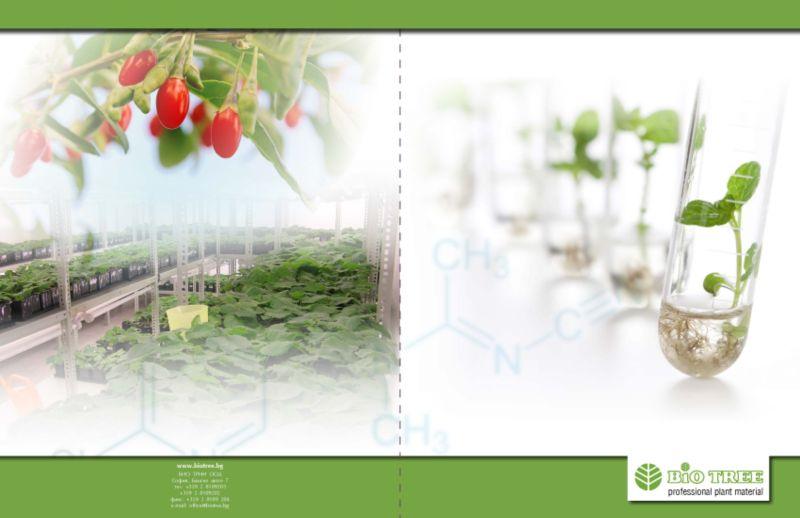 Brochure for a bio laboratory