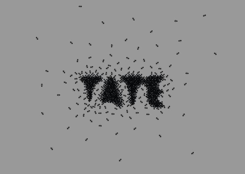TATE - Ants