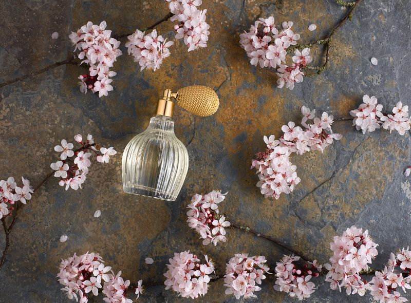 Fragrance and Blossom