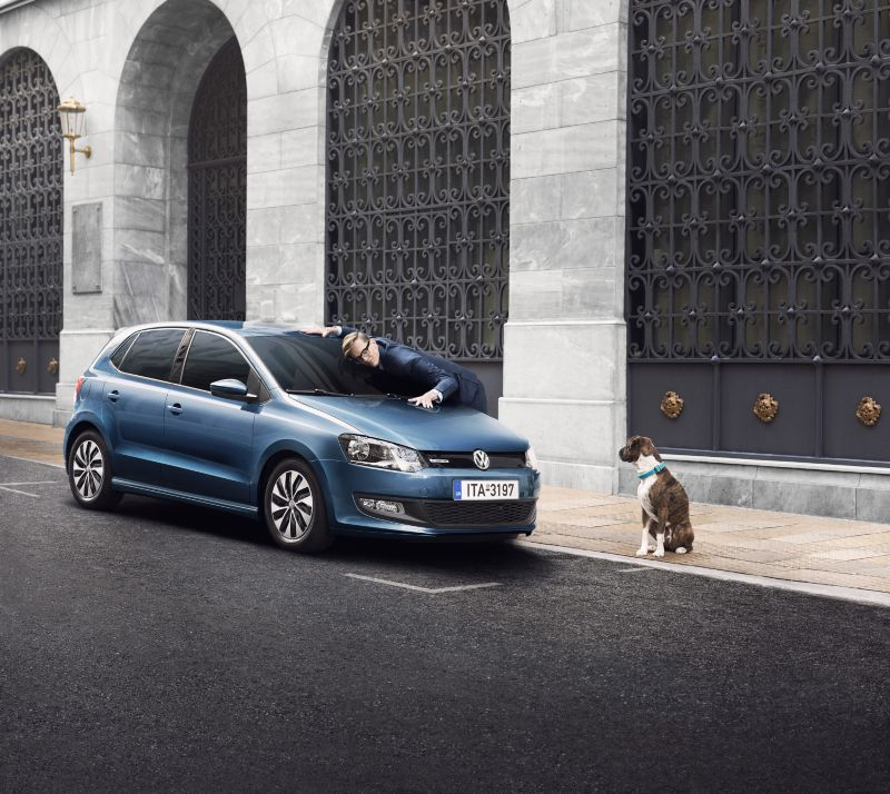 VW Golf - A man and a dog