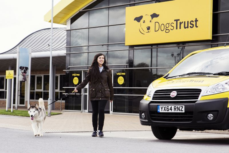 Dog's Trust Rehoming Centre in Manchester