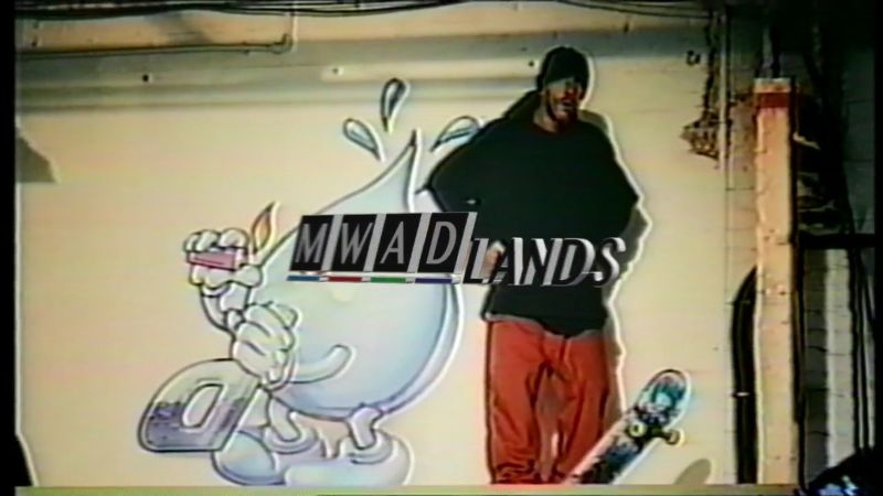 Palace Skateboards 'Mwadlands'