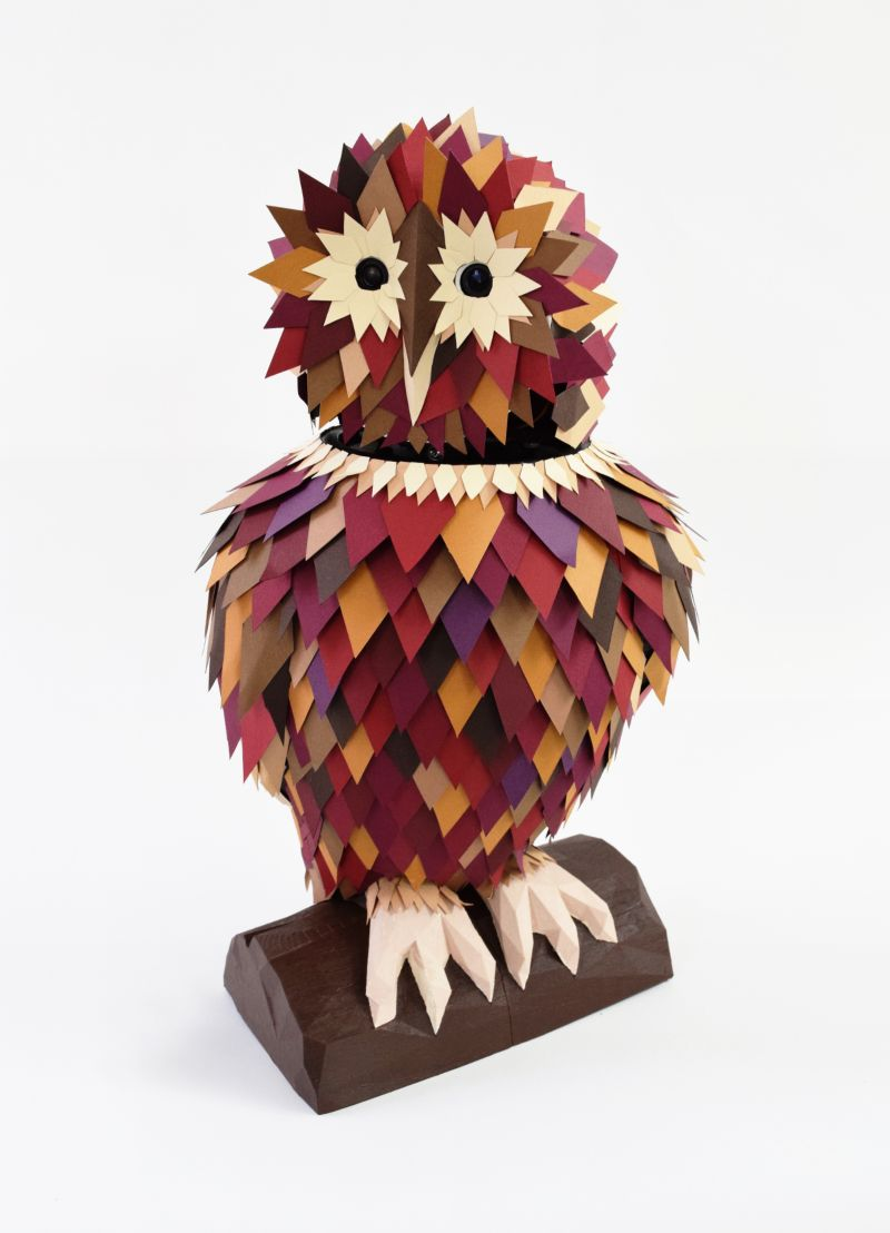 Colour Tracking Owl