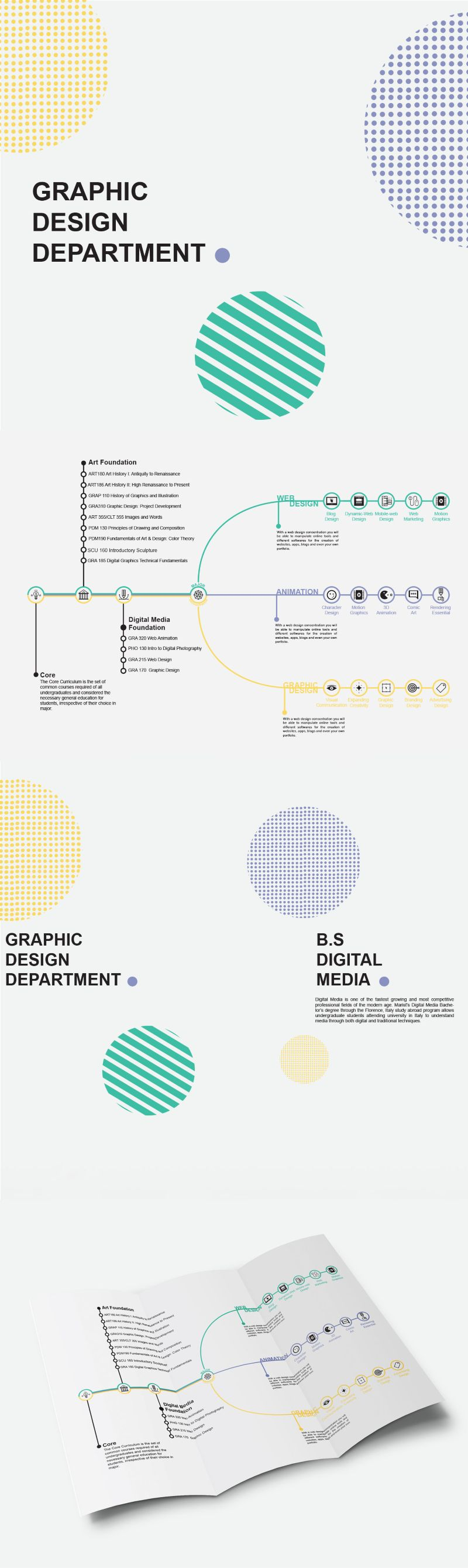 Graphic Design B.S digital media //Brochure and Infographic design