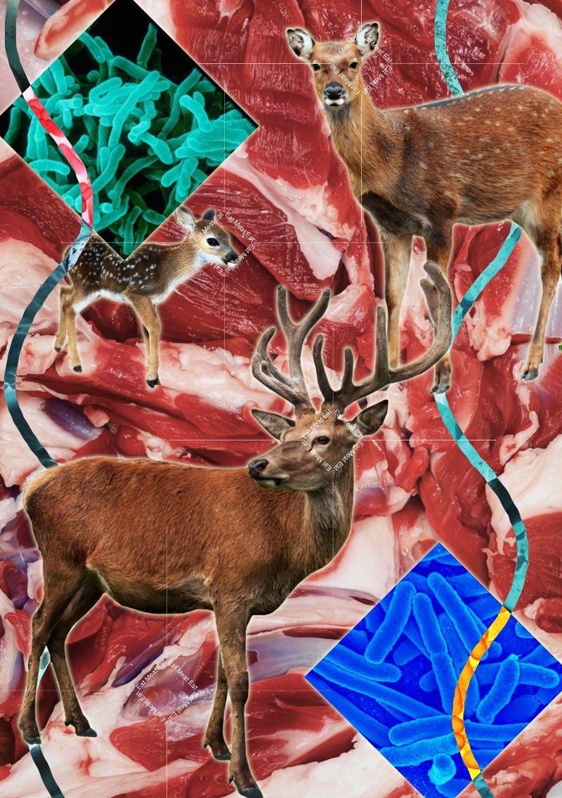 Eat Meat 2017