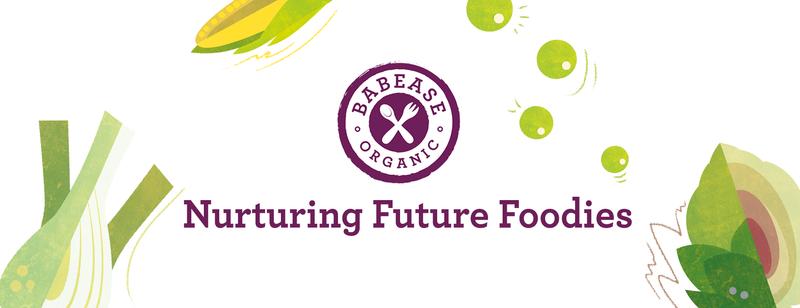 Baby Food Branding and Social Media