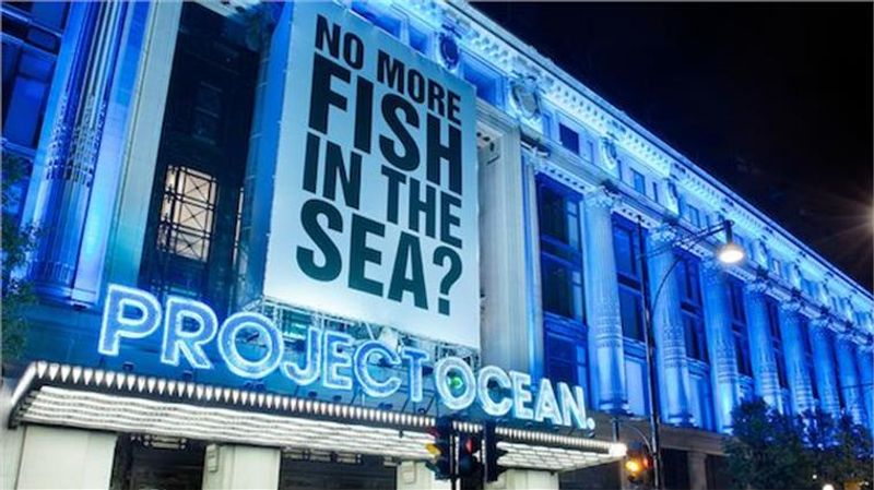 Project director for Selfridges PROJECT OCEAN