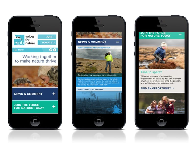 RSPB Site Redesign and UX