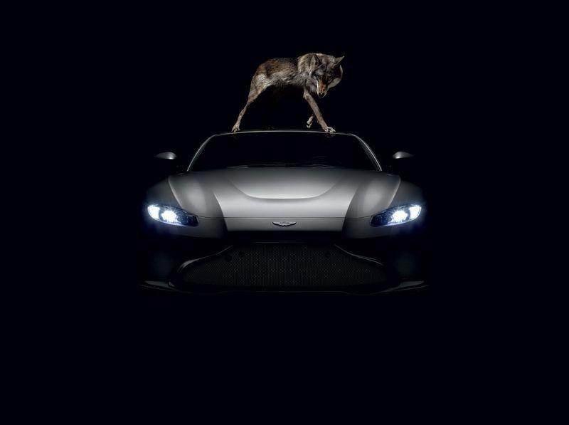 Aston Martin - Vantage