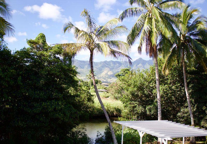 Outsite Hawaii