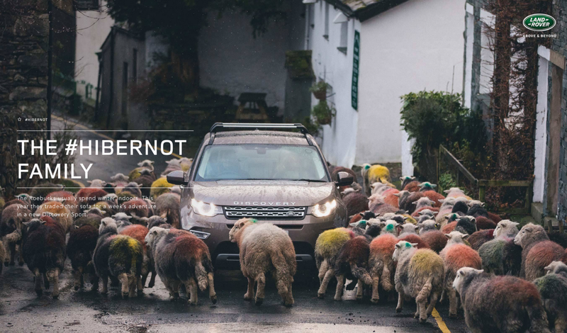 Land Rover Hibernot Family