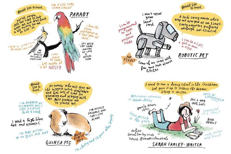 Writing an entertaining guide to choosing a pet