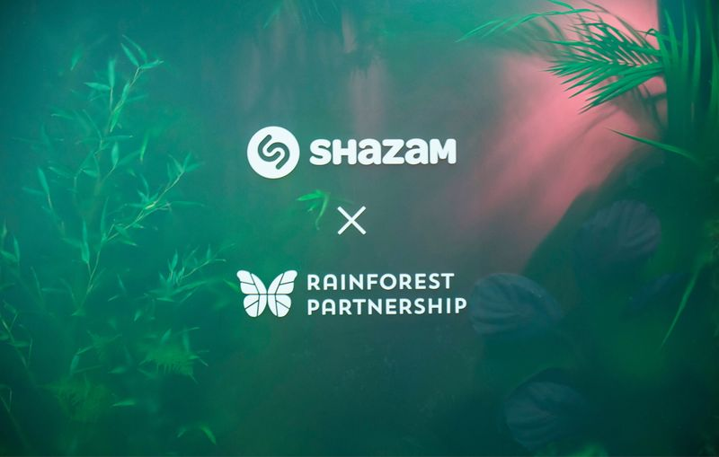RAINFOREST INSTALLATION — Shazam X Rainforest Partnership at Mindshare