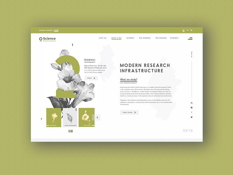 Botanic Gardens - Web Design Concepts