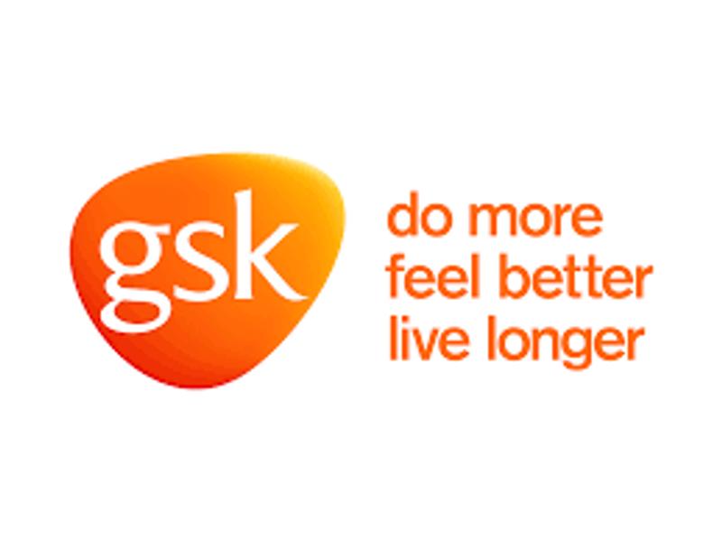 GSK corporate project
