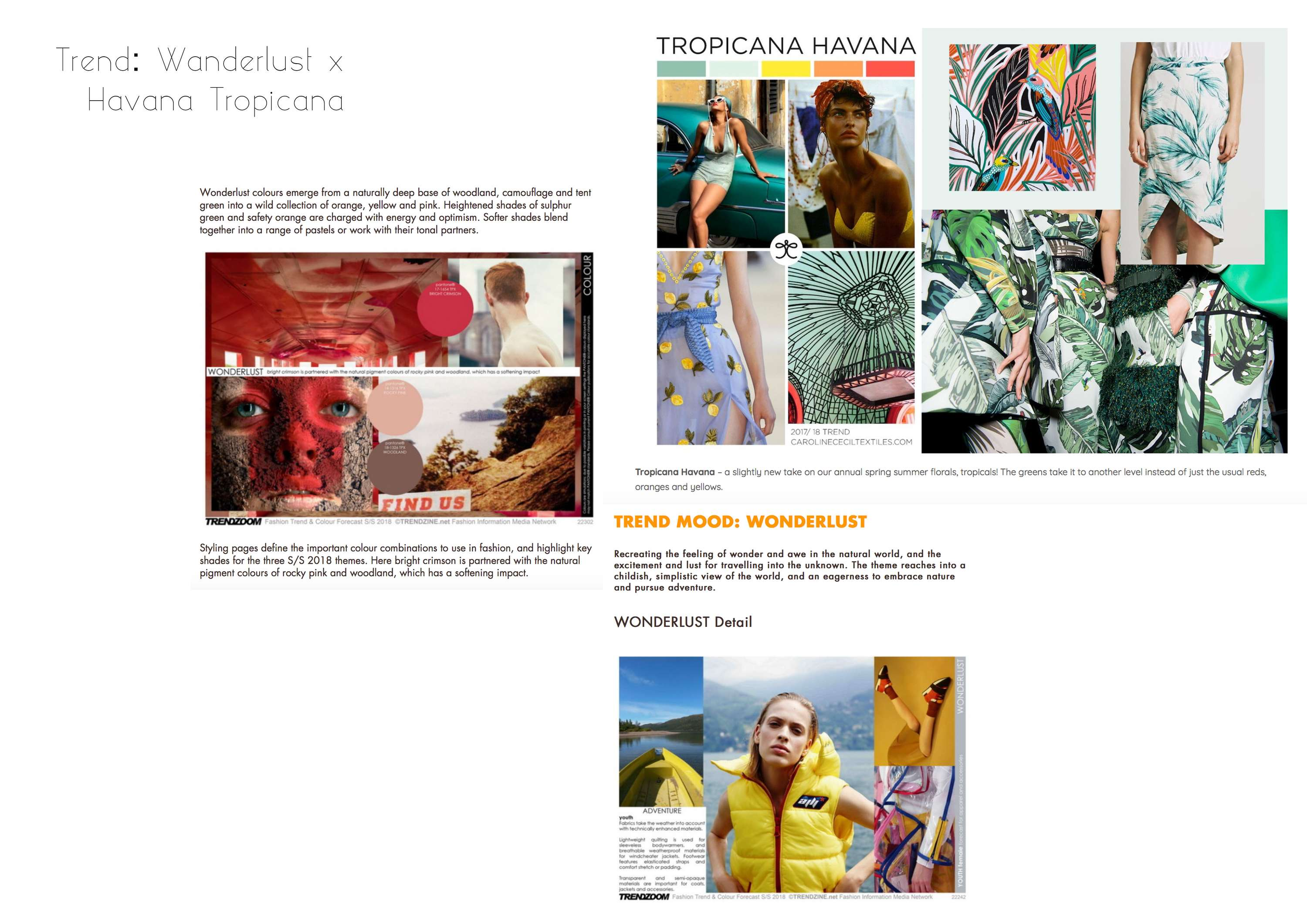 f8d703ecc2a ... on my portfolio I decided to look into trend research and explore print  design. I was inspired by the Wanderlust Trend as well as the Tropicana  Havana ...