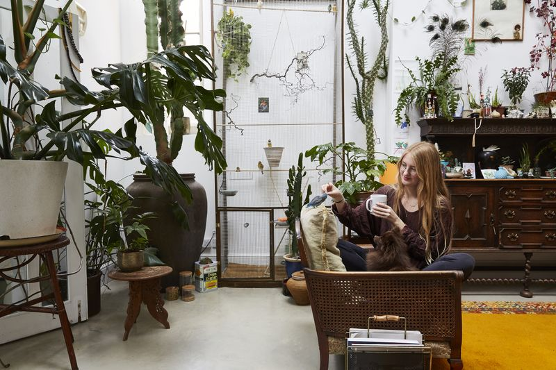 My Modern House: photographer Steph Wilson on living with Pomeranians, parrots and plant-filled interiors in Brixton