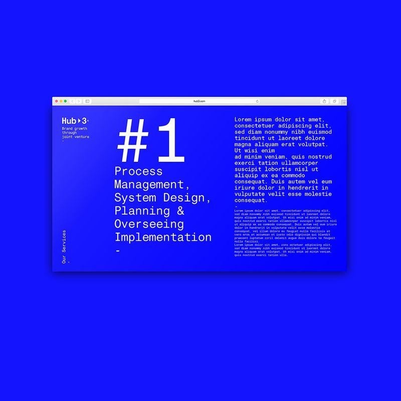 Digital Design // Selected Website Developments Vol. 01