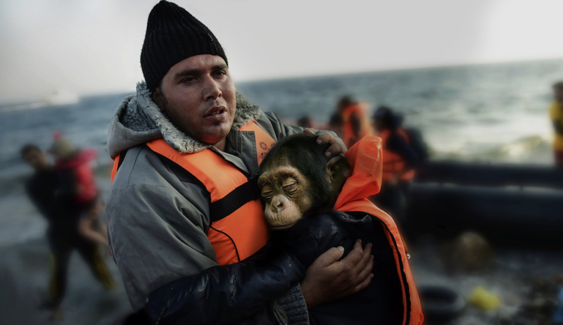 The refugee crisis is not just a human problem