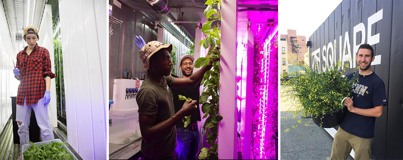 Why I'm empowering a new generation of farmers to transform America's food system