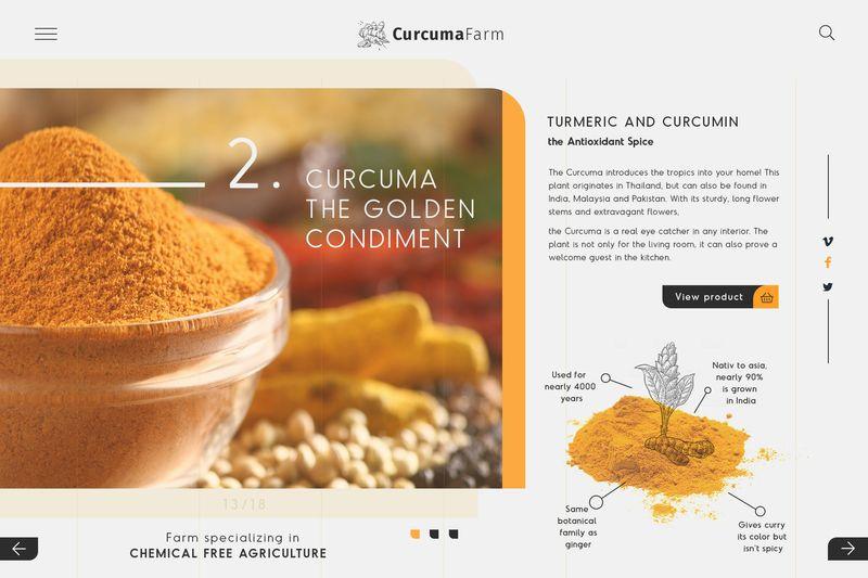 Organic Curcuma Farm  ► Web Design