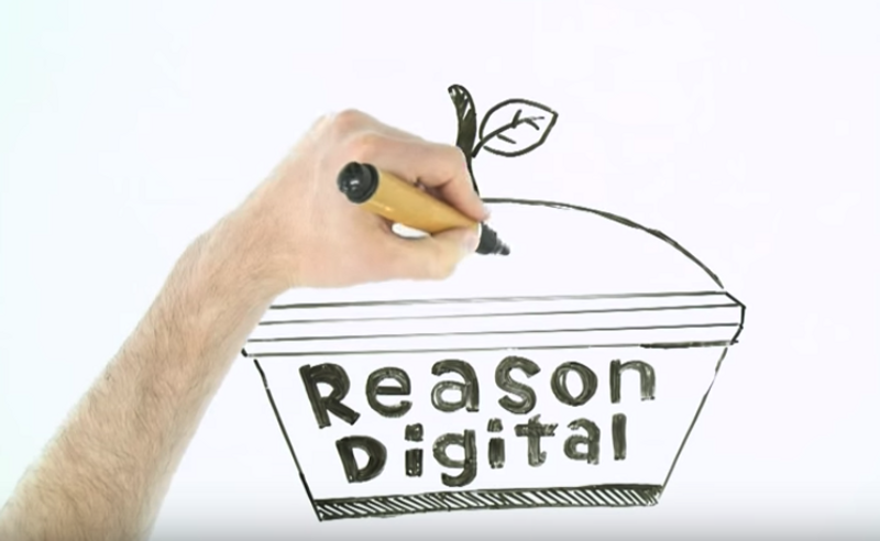 Draw My Life | Reason Digital