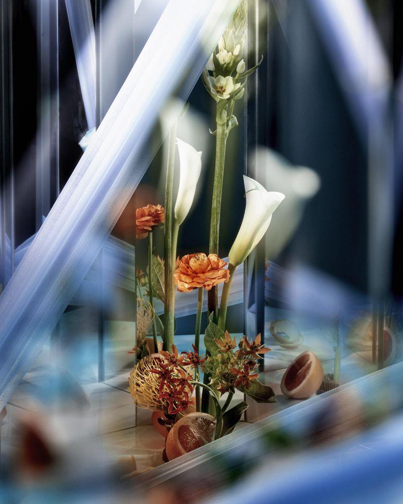 Mirror Mirror, Green Gallery, online magazine