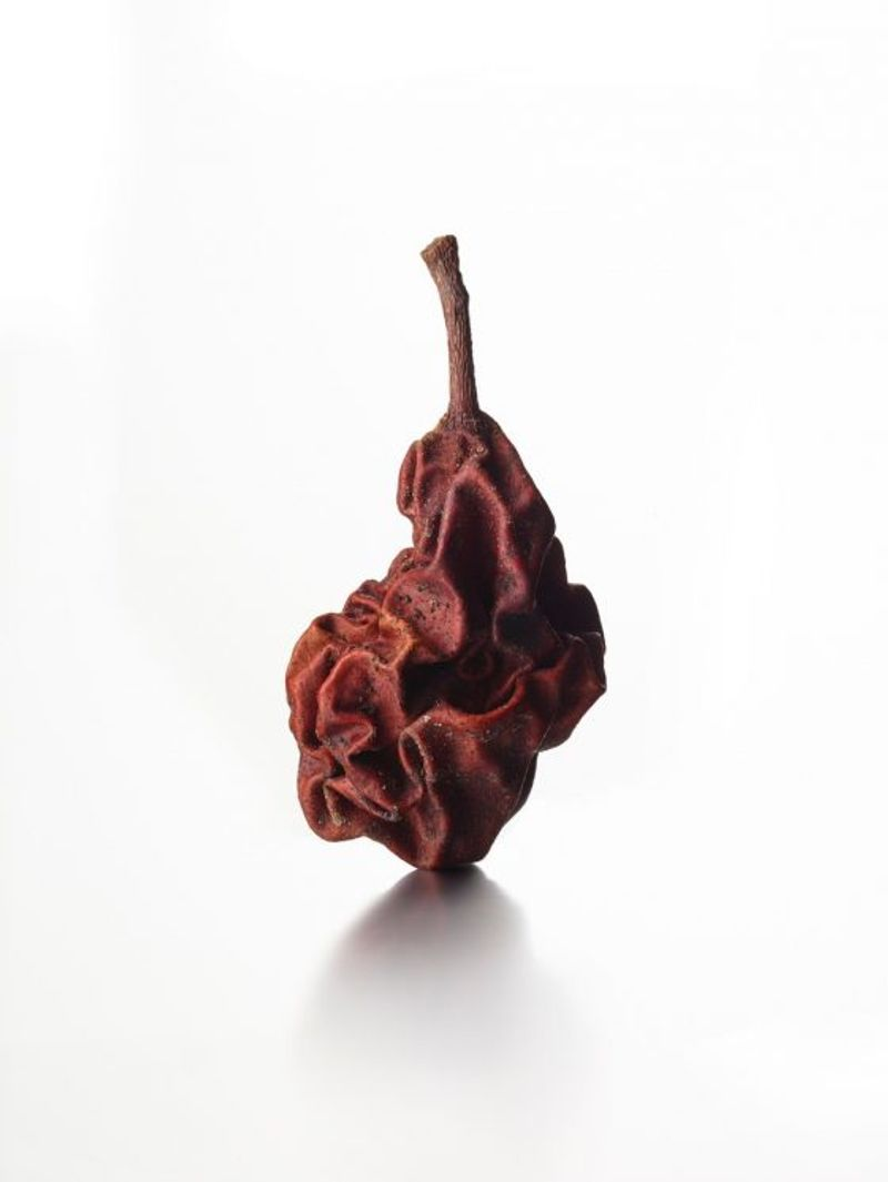 Kevin Summers, Dried Pear