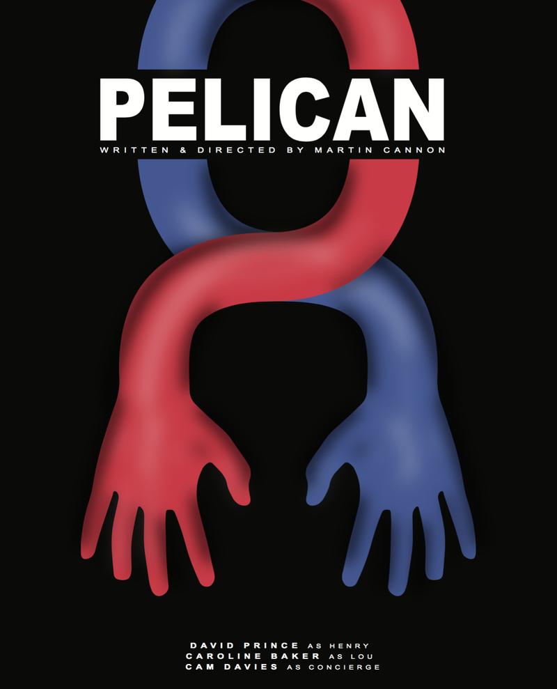 Pelican (short film)