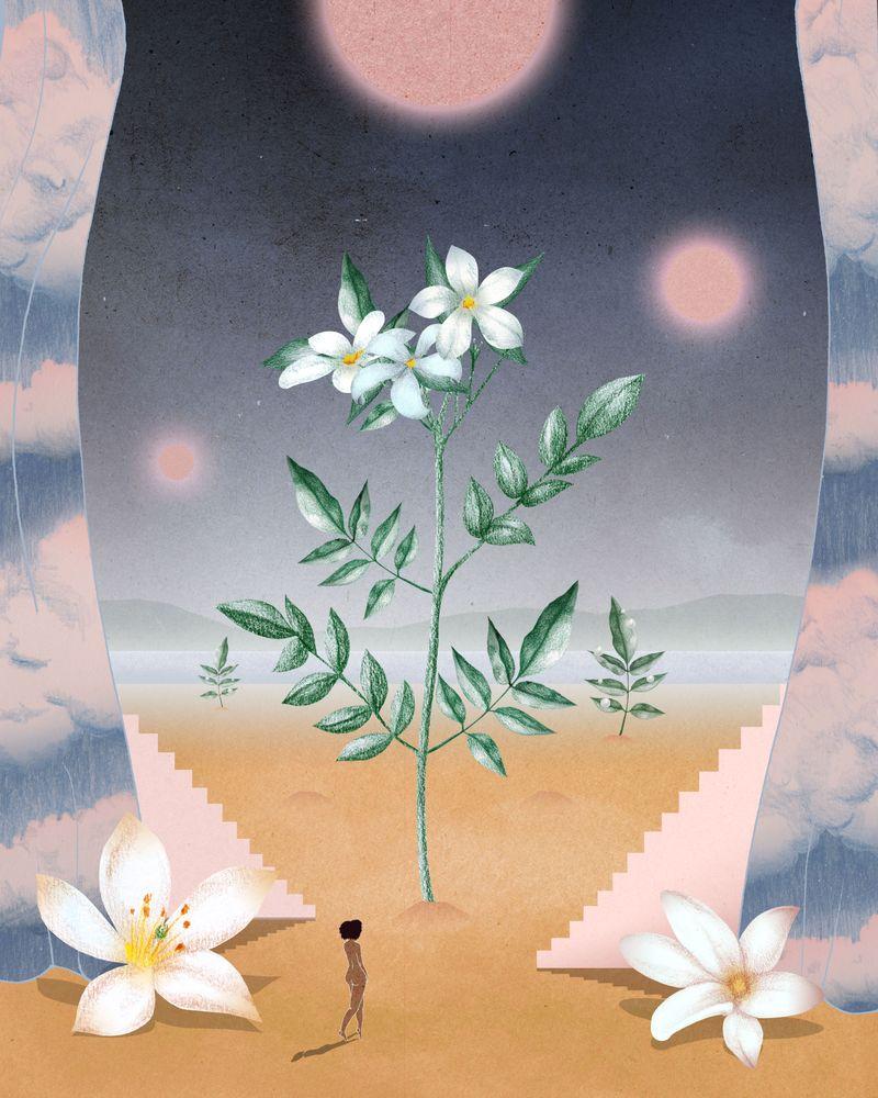 Miu Miu Fleur D'Argent Ilustrations