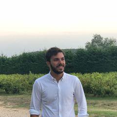 Francesco Politi