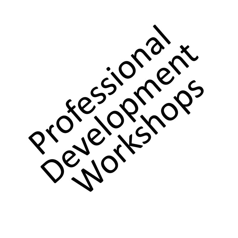 Professional Development Workshops at the New Ashgate Gallery with Alison Branagan