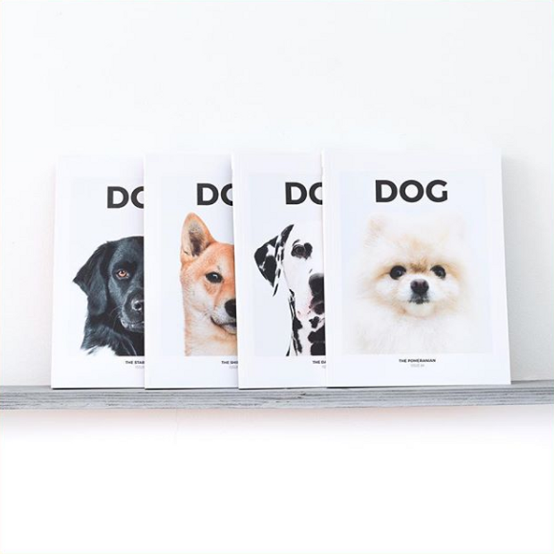 SUBMISSIONS + INFO: DOG MAG