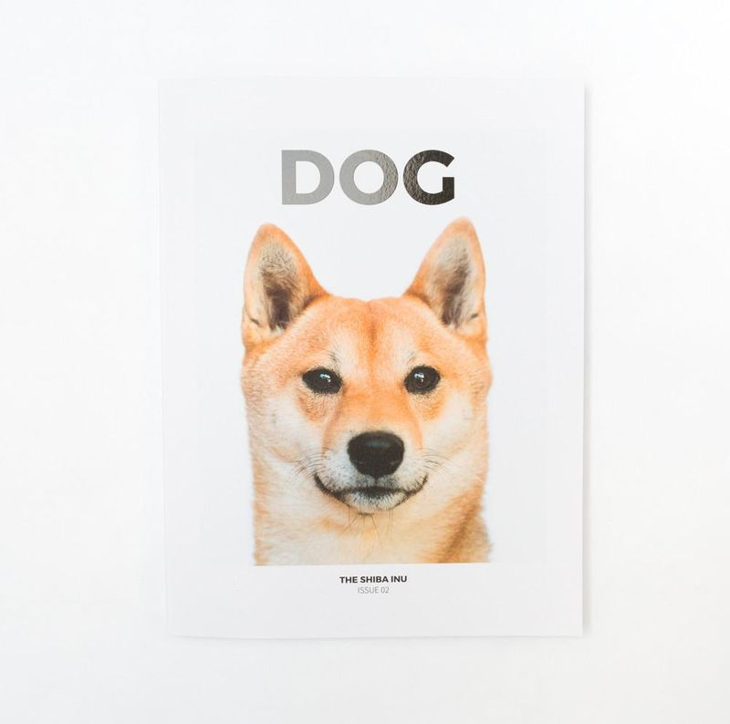 DOG MAG - ISSUE 2