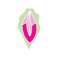 Vagina-nomics
