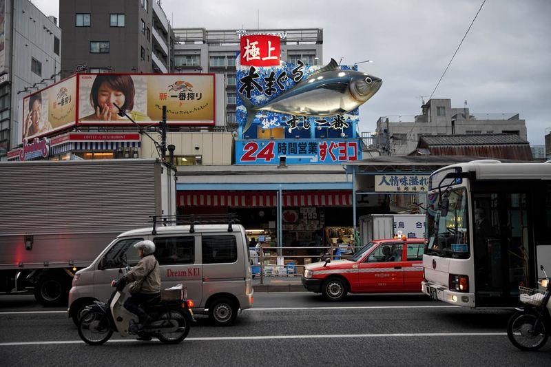 Tsukiji Fish Market Film