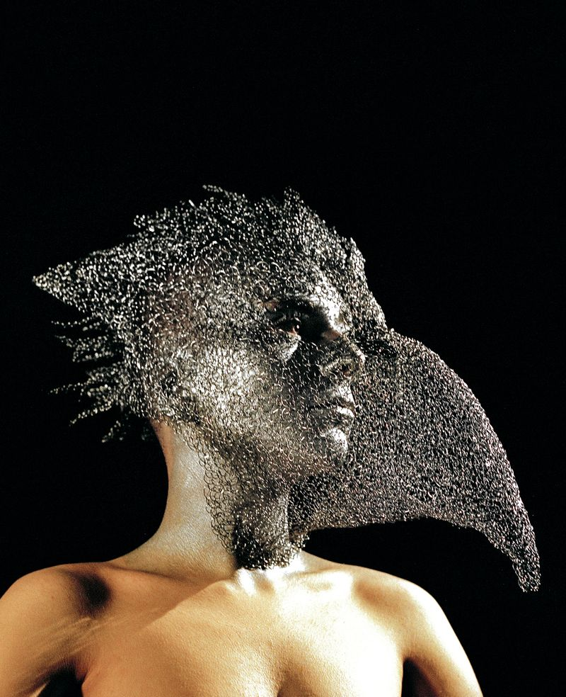 Griffin- Giacomo Bevanati's Artworks