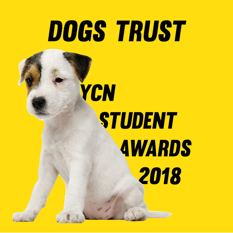 YCN Student Awards Entry