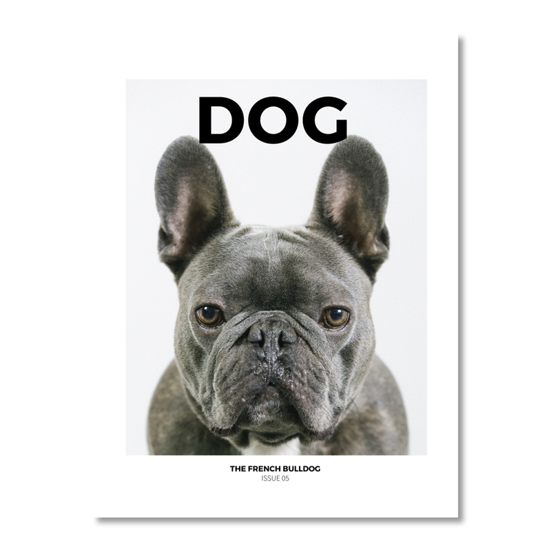 DOG - ISSUE 5 THE FRENCH BULLDOG: EDITORIAL DESIGN