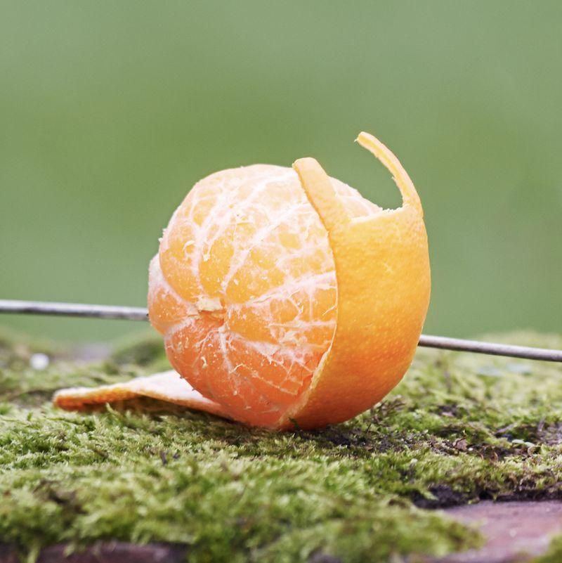 innocent fruit and veg art