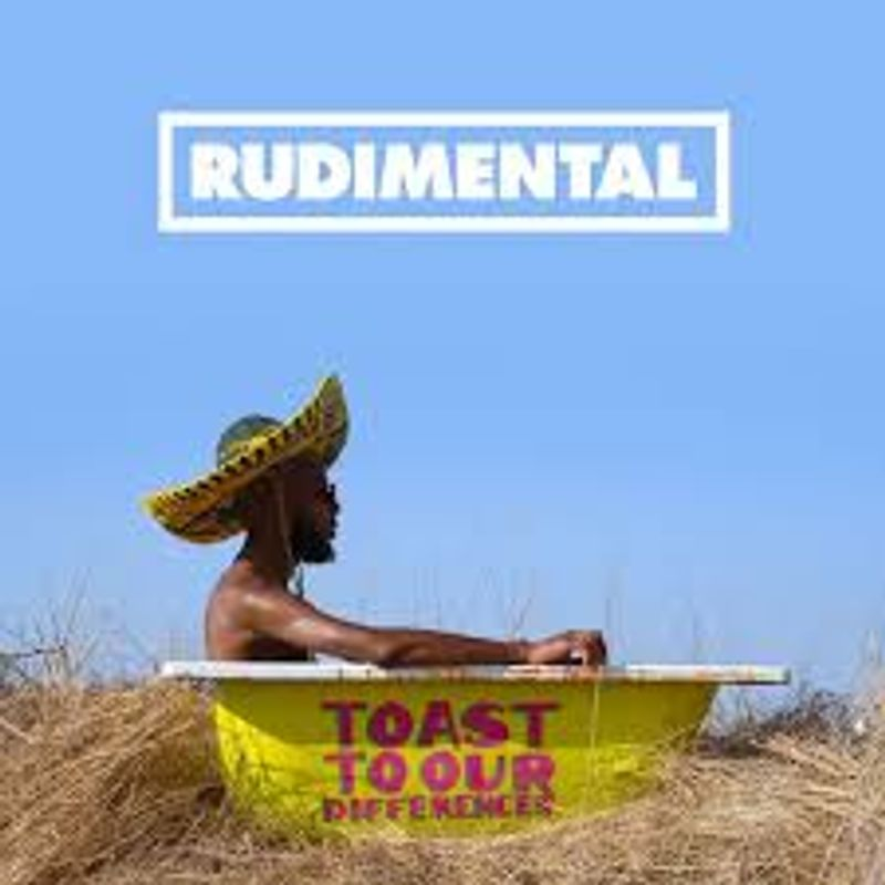 "Rudimental ""Toast to our differences"""