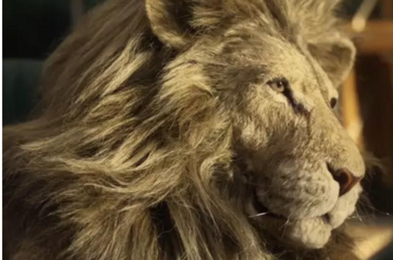 IKEA > Lion Man