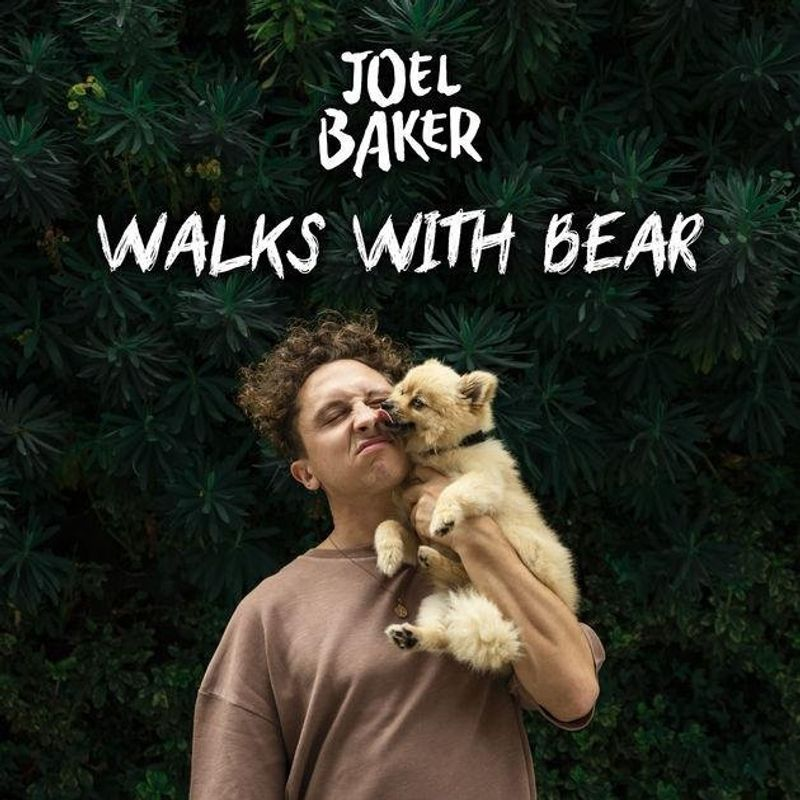Walks With Bear by Joel Baker