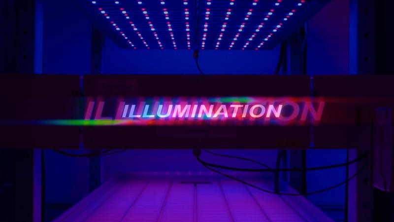 Illumination - Documentary Film (ongoing)