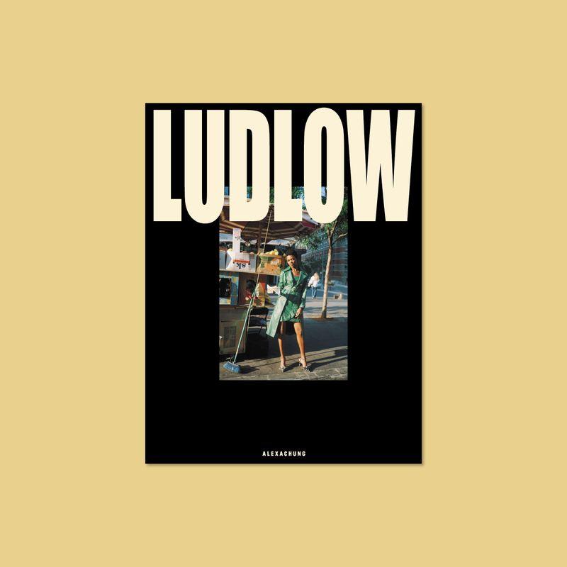 Alexachung —LUDLOW