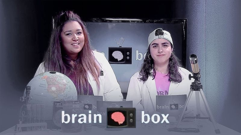 Brainbox LIVE - The Science Show that Blows your Mind!